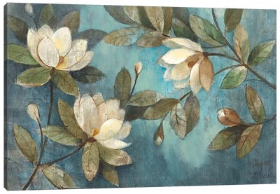 Floating Magnolias Canvas Art Print