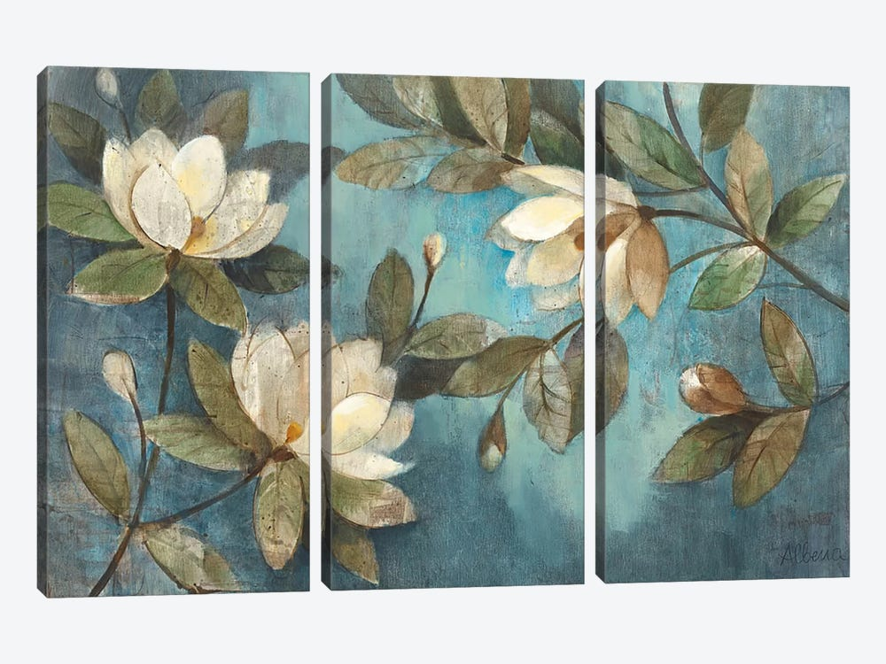Floating Magnolias by Albena Hristova 3-piece Canvas Wall Art