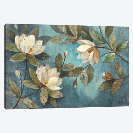 Floating Magnolias Canvas Print #WAC53} by Albena Hristova Canvas Art