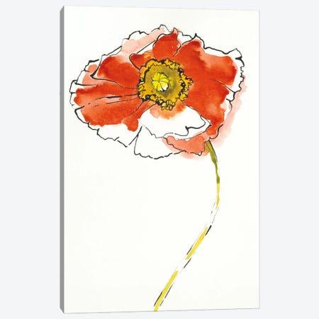 Red Icelands I Canvas Print #WAC5405} by Shirley Novak Art Print