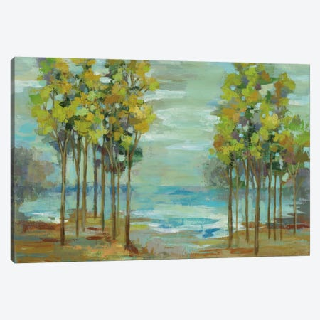 Spring Trees Canvas Print #WAC5414} by Silvia Vassileva Canvas Art