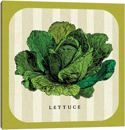 Linen Vegetable II Canvas Art Print