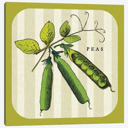 Linen Vegetable IV Canvas Print #WAC5428} by Studio Mousseau Canvas Artwork