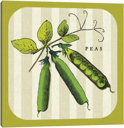 Linen Vegetable IV Canvas Art Print