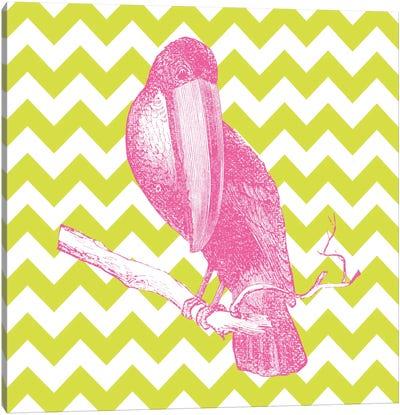 Bright Menagerie Toucan Canvas Print #WAC5484