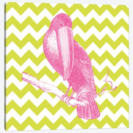 Bright Menagerie Toucan Canvas Print #WAC5484} by Wild Apple Portfolio Canvas Print