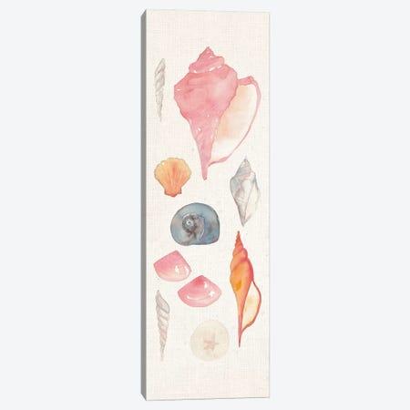 Sea Gems I Canvas Print #WAC5486} by Wild Apple Portfolio Art Print