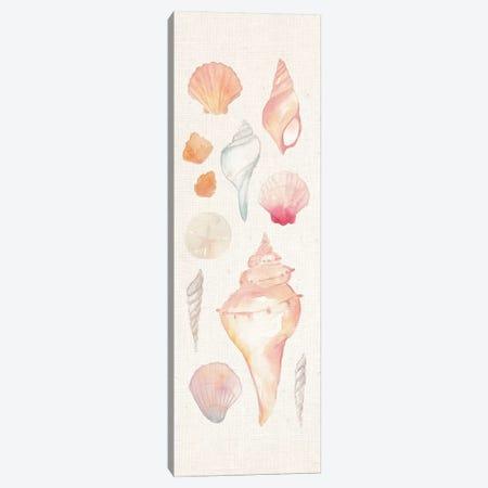 Sea Gems II Canvas Print #WAC5487} by Wild Apple Portfolio Canvas Art Print