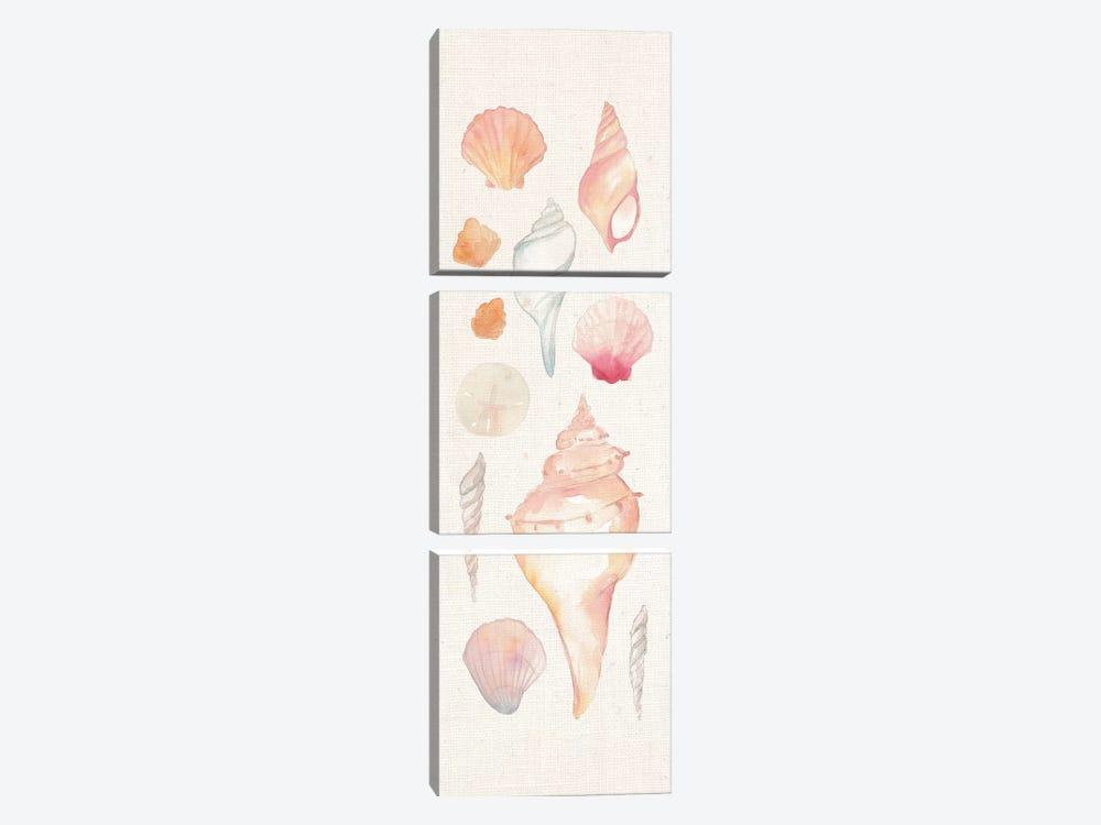 Sea Gems II by Wild Apple Portfolio 3-piece Canvas Wall Art