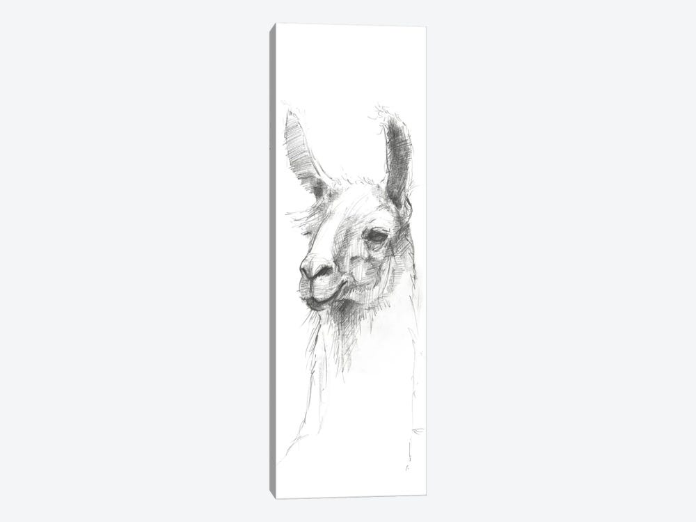 Bianca Sketch by Avery Tillmon 1-piece Art Print