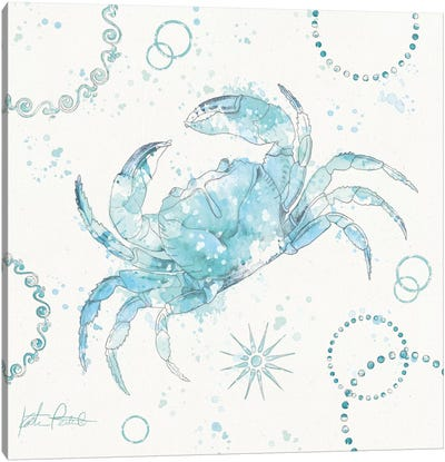 Coastal Splash IV Canvas Art Print