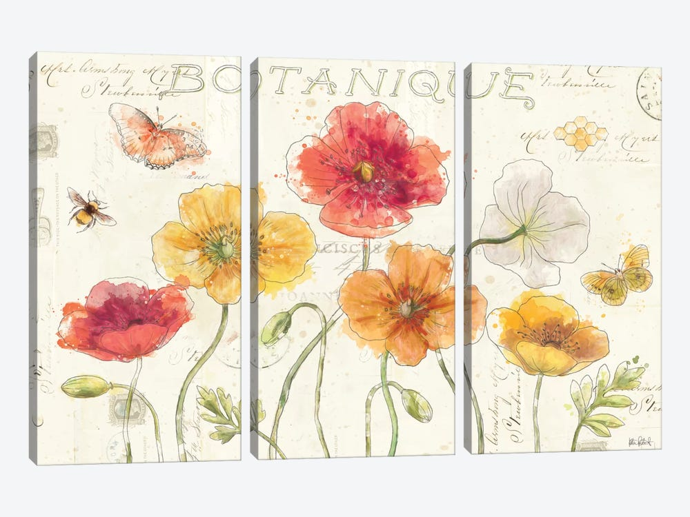 Painted Poppies I by Katie Pertiet 3-piece Canvas Artwork