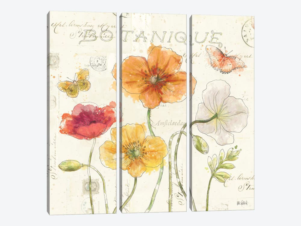 Painted Poppies II by Katie Pertiet 3-piece Art Print