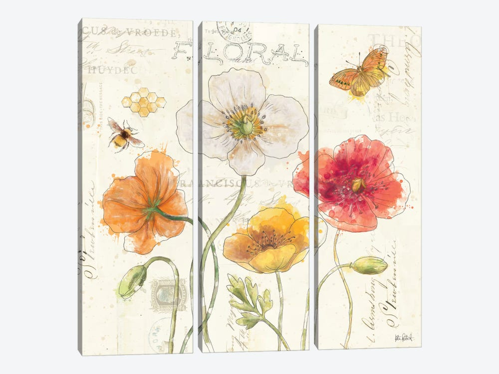 Painted Poppies III by Katie Pertiet 3-piece Canvas Wall Art