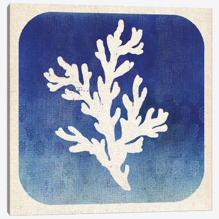 Watermark Coral Canvas Print #WAC5576} by Studio Mousseau Art Print