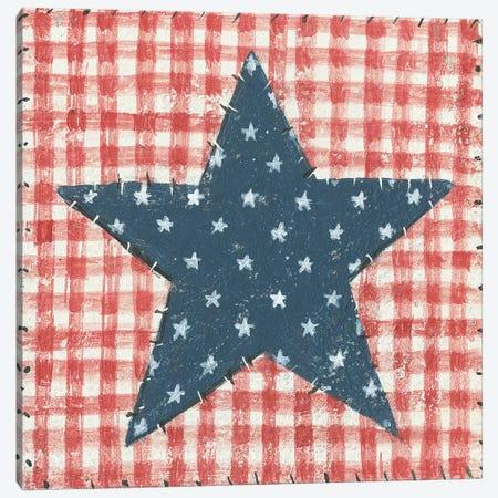 Americana Quilt II Canvas Print #WAC5592} by David Carter Brown Canvas Art