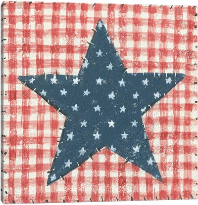 Americana Quilt II Canvas Art Print