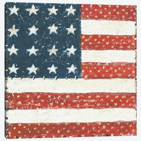 Americana Quilt IV Canvas Print #WAC5594} by David Carter Brown Canvas Print
