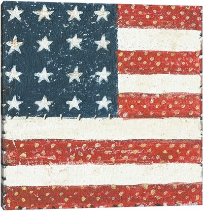 Americana Quilt IV Canvas Art Print