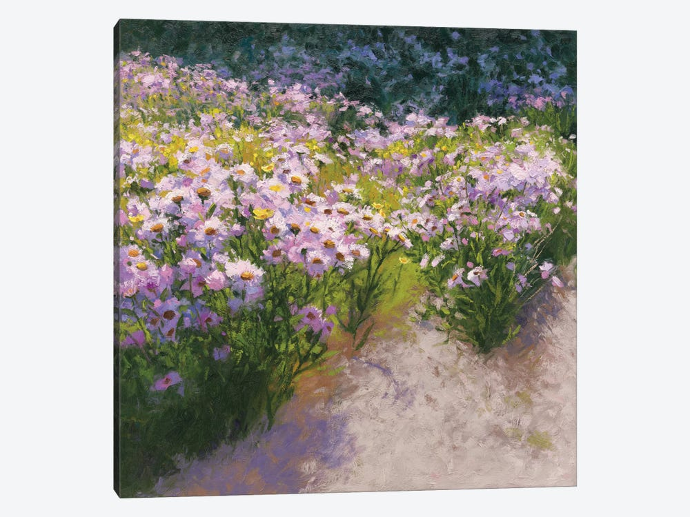 Buckhorn Aster Show by Shirley Novak 1-piece Canvas Art Print