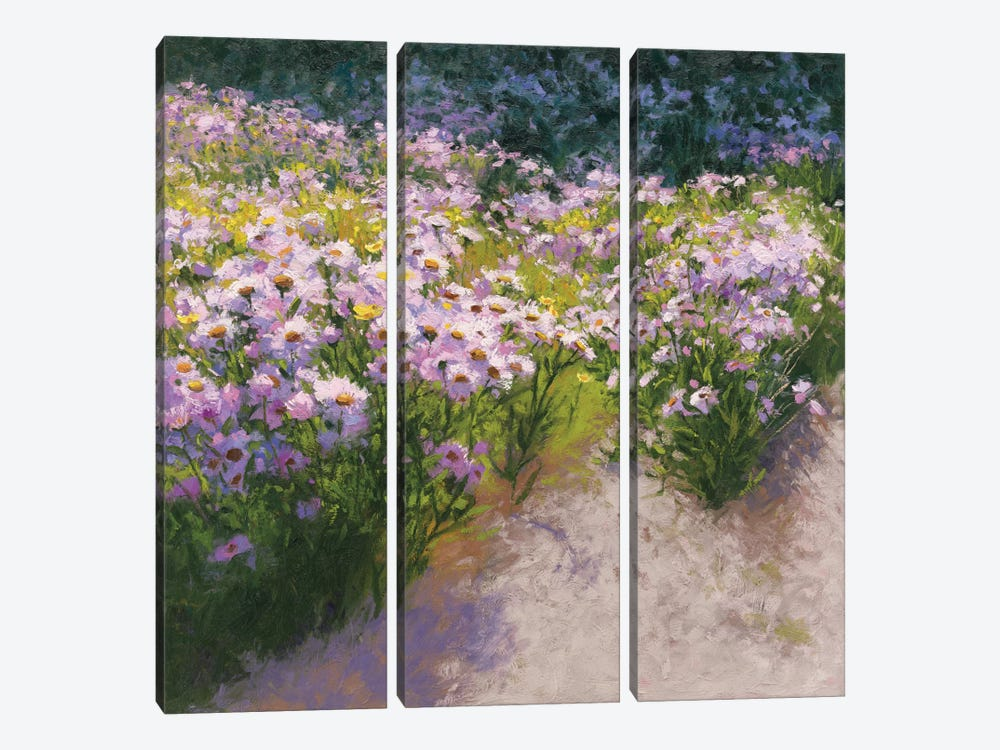 Buckhorn Aster Show by Shirley Novak 3-piece Art Print
