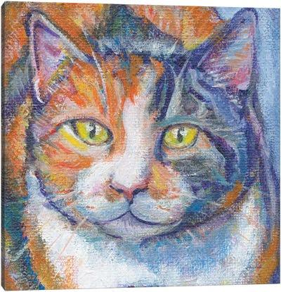 Juju Bee In Zoom Canvas Print #WAC5629
