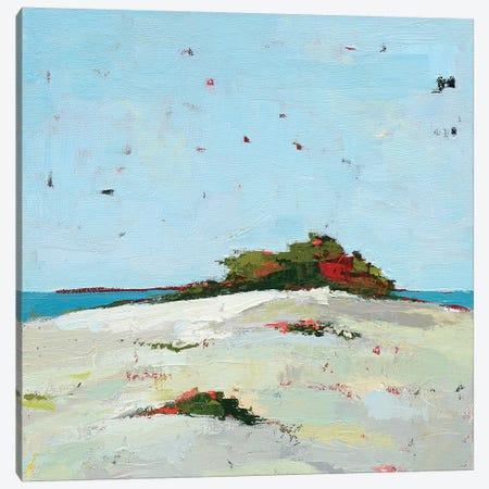Fall Dune Canvas Print #WAC5721} by Phyllis Adams Canvas Art Print