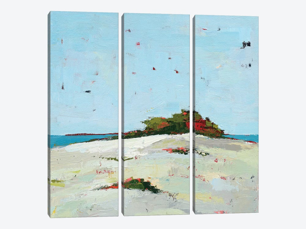 Fall Dune by Phyllis Adams 3-piece Canvas Wall Art