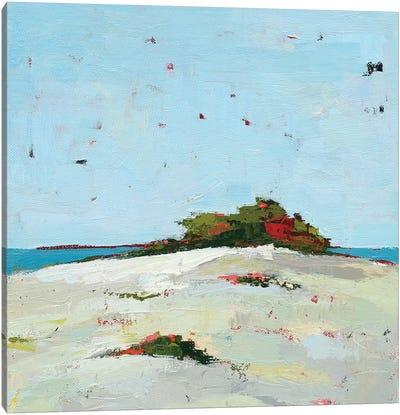 Fall Dune Canvas Art Print