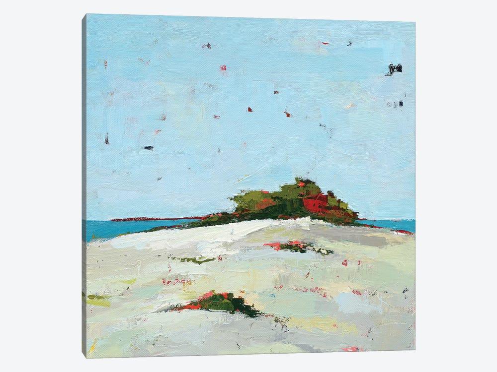 Fall Dune by Phyllis Adams 1-piece Canvas Artwork