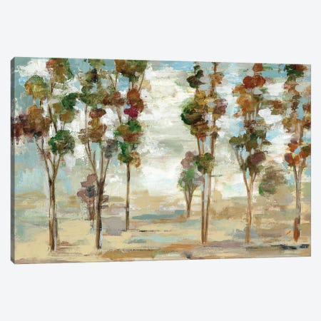 Serene Forest Canvas Print #WAC5757} by Silvia Vassileva Canvas Art Print