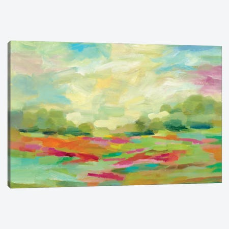 Sunny Fields Canvas Print #WAC5760} by Silvia Vassileva Canvas Print