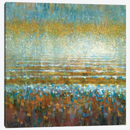 Rains Over The Lake Canvas Print #WAC5767} by Danhui Nai Canvas Wall Art