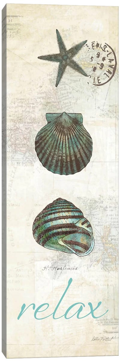 Touch of Blue Shells I Canvas Art Print