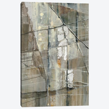 Silver III Canvas Print #WAC5778} by Albena Hristova Canvas Wall Art