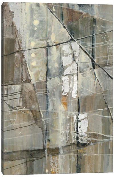 Silver III Canvas Print #WAC5778