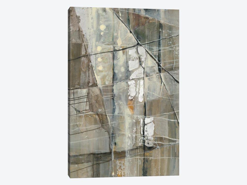 Silver III by Albena Hristova 1-piece Canvas Art