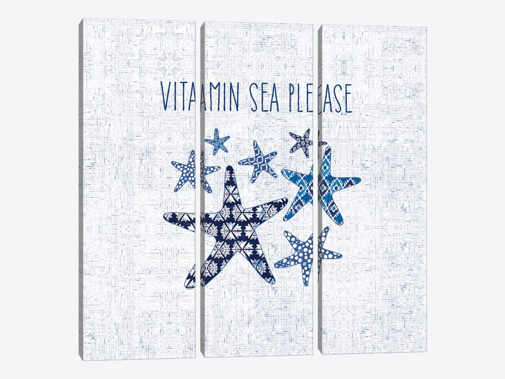 Sunday On The Coast VI by Pela 3-piece Canvas Print