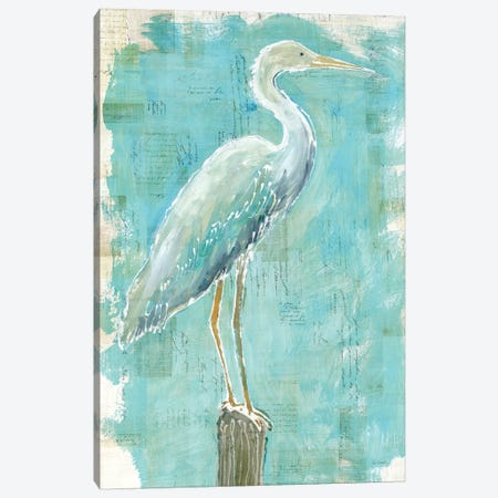 Coastal Egret I Canvas Print #WAC5796} by Sue Schlabach Canvas Print