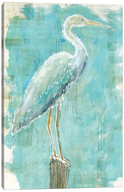 Coastal Egret I Canvas Art Print