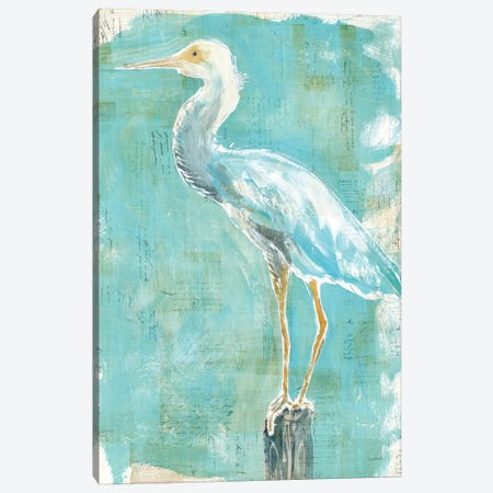 Coastal Egret II Canvas Print #WAC5797} by Sue Schlabach Art Print