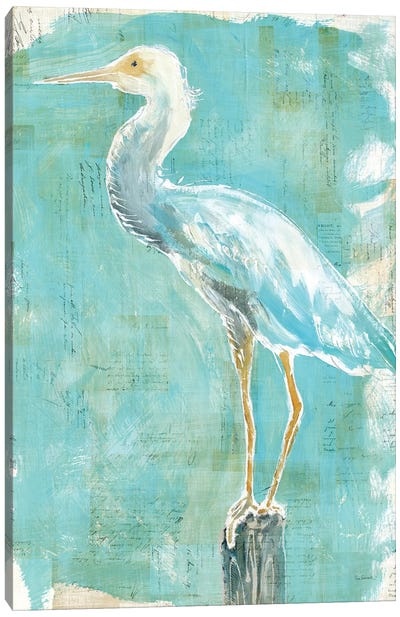 Coastal Egret II Canvas Art Print