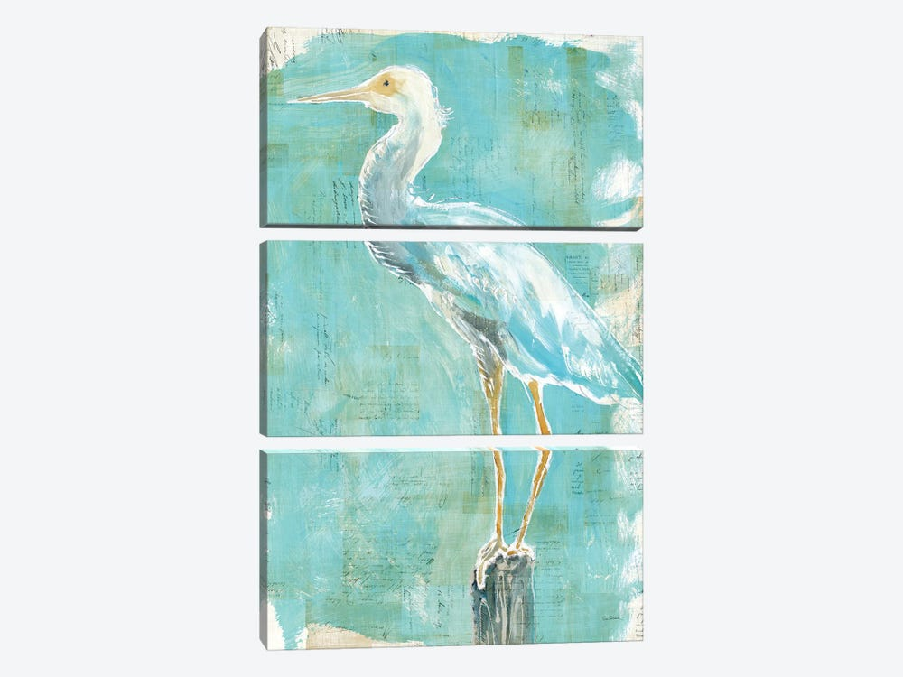 Coastal Egret II by Sue Schlabach 3-piece Canvas Print
