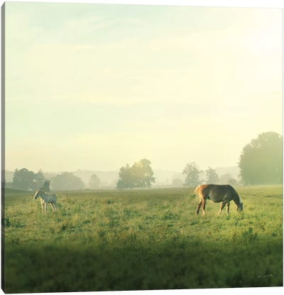 Farm Morning I Canvas Art Print