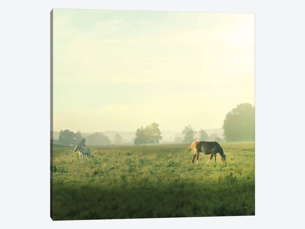 Farm Morning I by Sue Schlabach 1-piece Canvas Wall Art