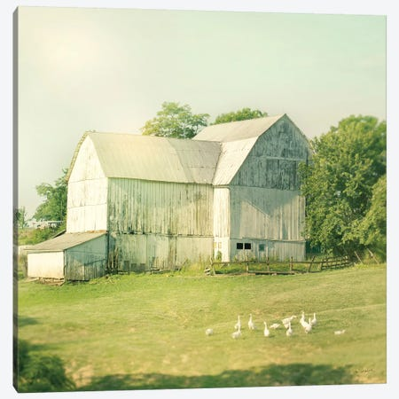 Farm Morning III Canvas Print #WAC5800} by Sue Schlabach Canvas Art