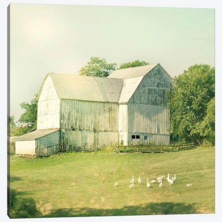 Farm Morning III Canvas Print #WAC5800} by Sue Schlabach Canvas Art