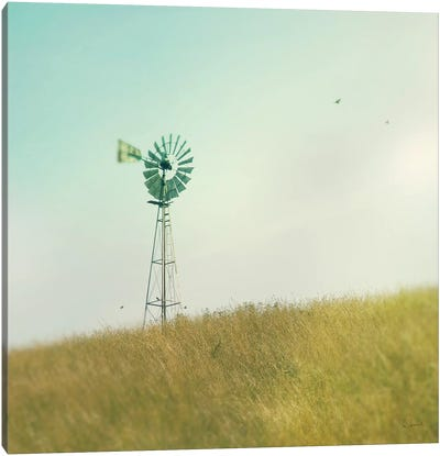 Farm Morning IV Canvas Art Print