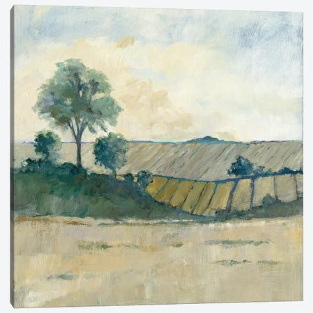 Fields Before The Storm Canvas Print #WAC5810} by Avery Tillmon Art Print