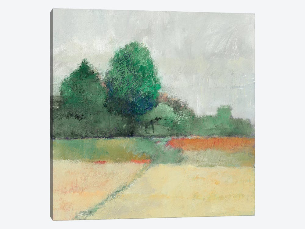 Path Through The Field 1-piece Canvas Art